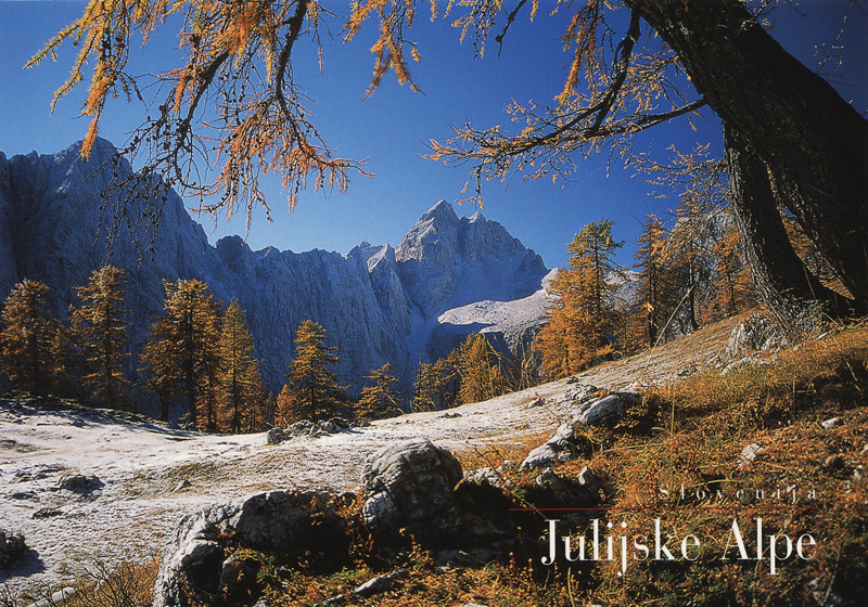 Julian Alps meadow